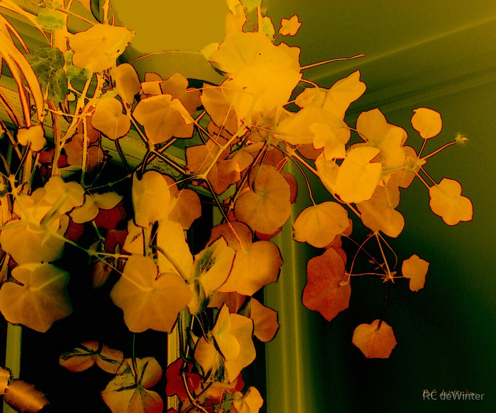Corner in Green and Gold by RC deWinter
