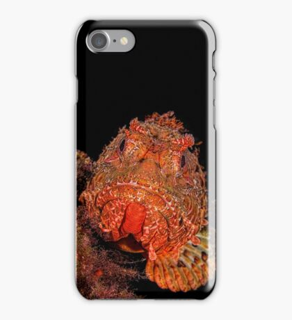 Scorpionfish Portrait iPhone Case/Skin