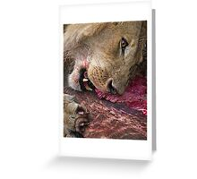 Lion's Meal Greeting Card