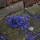 a heap of blue petals by lukasdf