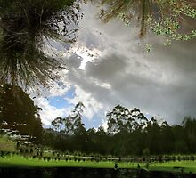 The Pond at Mavis's by Kitsmumma