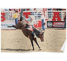 Calgary Stampede 2009, #46, Canada. Poster