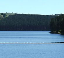 Myponga Reservoir (lower side 3) by ScenerybyDesign