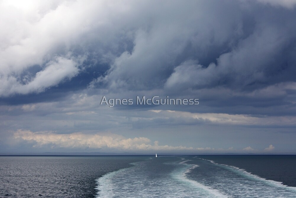 The wake by Agnes McGuinness