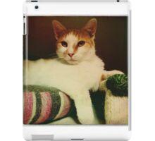 Sitting Pretty iPad Case/Skin