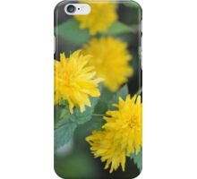 Yellow Kerria Japonica iPhone Case/Skin