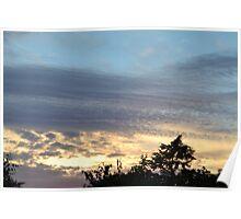 Speckled Sunset Poster