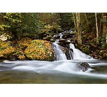 Mannis Branch Falls II Photographic Print