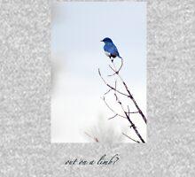 bluebird on a limb T-Shirt