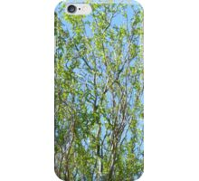 Winding Willow iPhone Case/Skin