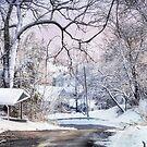 Snowy Day on 5th Street by Nadya Johnson