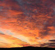 Mid-winter Sunrise by Susie Raine