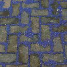 BedZed blues (2) by lukasdf