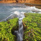 The Natural Beauty of the Bay of Islands by Neil