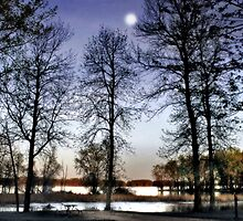 Moonrise on the Mississippi River by Nadya Johnson