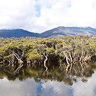 Tidal River Panorama by Tim Heraud
