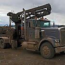 Western Montana Work Horse by Bryan D. Spellman