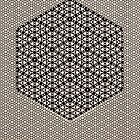 Silicon Atoms HyperCube Black White by atomicshop