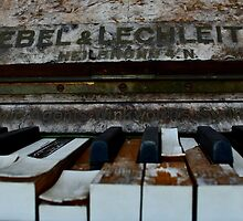 The Piano 2 by rossco