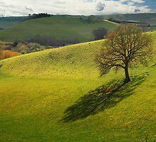 Natural Sundial by Nigel Finn