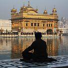 Meditation In Amritsar, Punjab, India by RIYAZ POCKETWALA