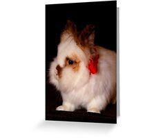 Lionhead bunny - Christmas Greeting Card