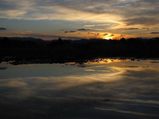 Real Puddle at Fake Lake by Jean Gregory  Evans