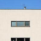 Spittelauer Lande Housing in Vienna (Austria)  by Petr Svarc