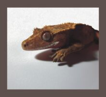 Crested Gecko Red Step Baby Tee