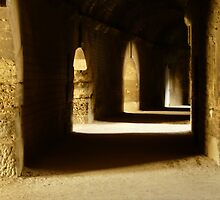 Roman Amphitheater--Arles by NancyR