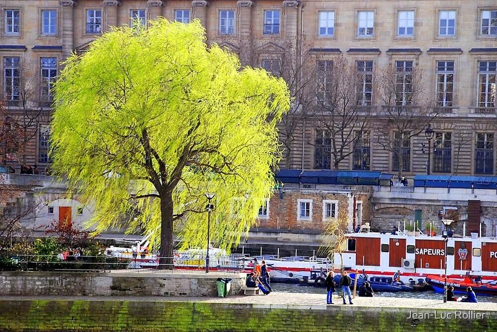 Paris - Square du Vert Galant. by Jean-Luc Rollier
