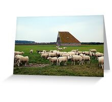 Typical Texel landscape Greeting Card