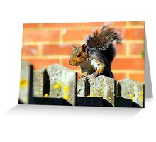 A Squirrel This Way Comes Greeting Card