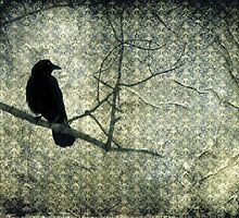 Old Damask And Crow by gothicolors