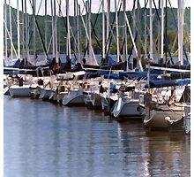 Lake City Marina by tvlgoddess