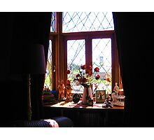 olde world Photographic Print