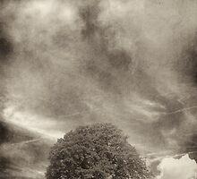 Storm Chaser by Alan Watt