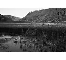 Glendalough Reeds Photographic Print