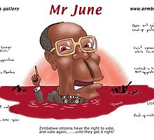 Mugabe's election mantra - democracy by farce by holty