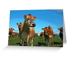 Jersey Poster Greeting Card
