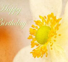 Windflower Beauty ~ Happy Birthday with Love by Sue H