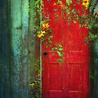 Behind The Red Door by pat gamwell