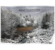 NH Different Drummer Poster Moose in a Baker River Oxbow Poster