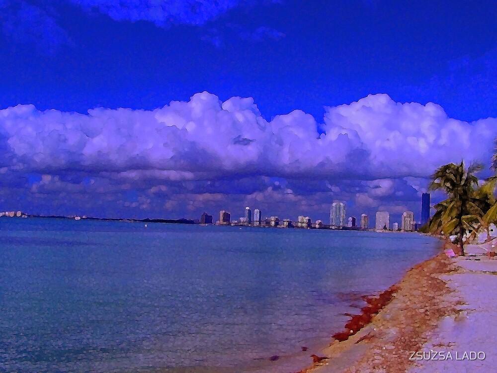 Key Biscayne Beach by ZSUZSA LADO