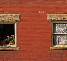 two windows by Lynne Prestebak