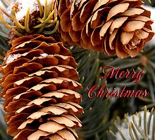 Christmas card with pinecones by Eivor Kuchta