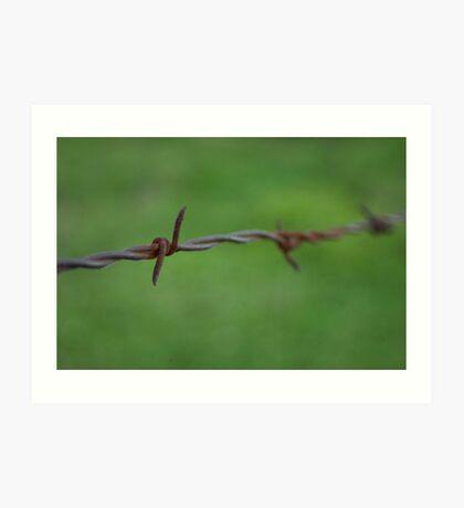 Old Metal Rusty Barbwire Fence Art Print
