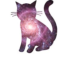 Electric Handkerchief | Space Kitty Photographic Print