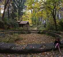 Fall in Lindner Park by grianne