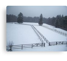 Horse Paddocks in winter, Bad Homburg Canvas Print